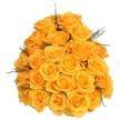 medium_roses_jaunes.jpg