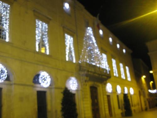 Nîmes 18 décembre 2009 069.JPG