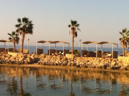 egypte,jean-luc romero,tunisie,politique,france,tourisme