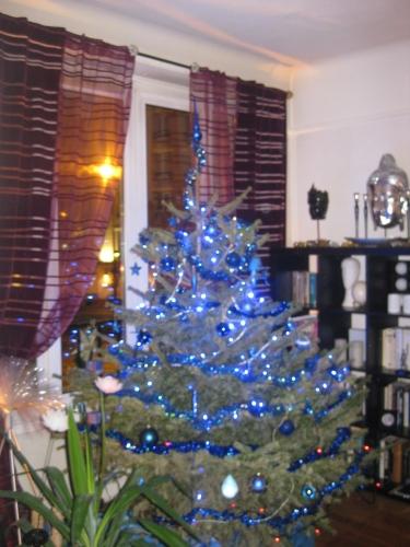 Sapin Noël W 2009 home.JPG