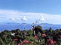 GuadeloupeVue.jpg