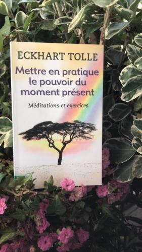 lecture,jean-luc romero,méditation