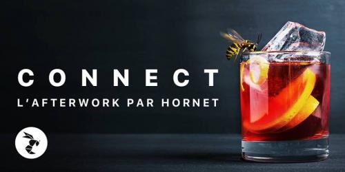 CONNECT HORNET 22 JUIN.jpg