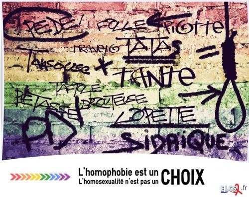 AfficheHomophobie cp.jpg
