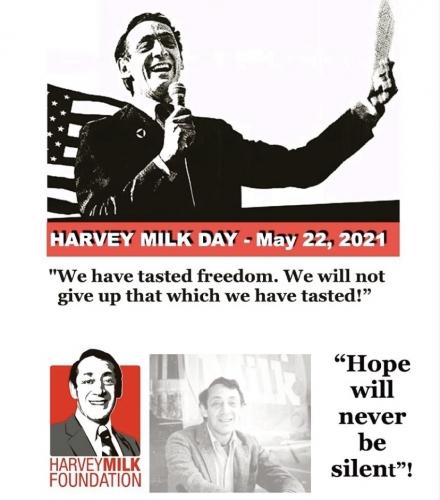 harvey milk,jean luc roomer michel,gay